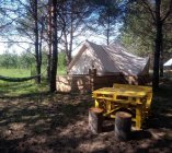 Glamping_Namiot_4_osoby_Male_Dolomity_3